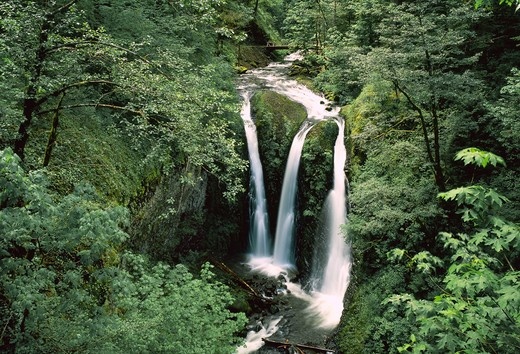 USA, Oregon, Columbia Gorge National Scenic Area, Triple Falls on Oneonta Creek : Stock Photo