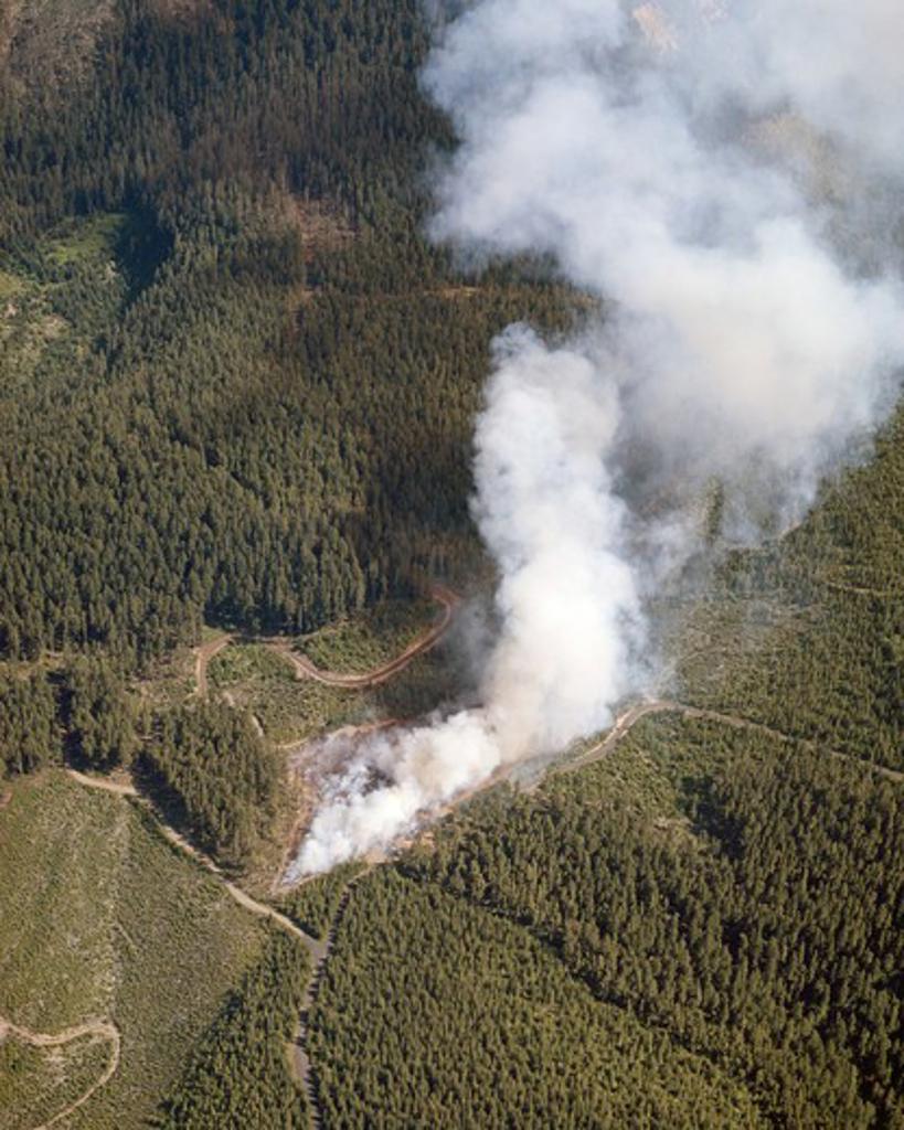 Stock Photo: 2109-601788 USA, Oregon, Mt. Hood National Forest, Aerial view of logging slash burn