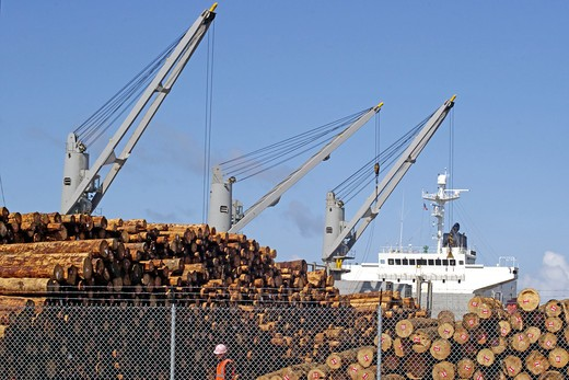 USA, Oregon, Astoria, Loading logs for shipment to Japan : Stock Photo