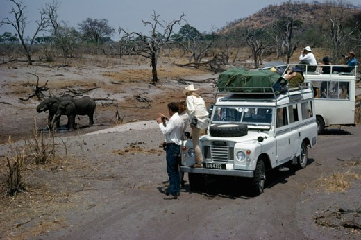 Stock Photo: 2167-586172 Tourists taking a photograph of two elephants in a national park, Savuti Channel, Chobe National Park, Botswana