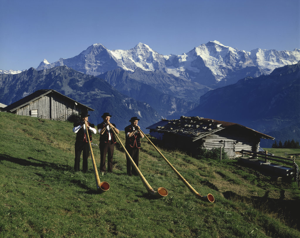 Stock Photo: 2203-579784 Alpine Horn