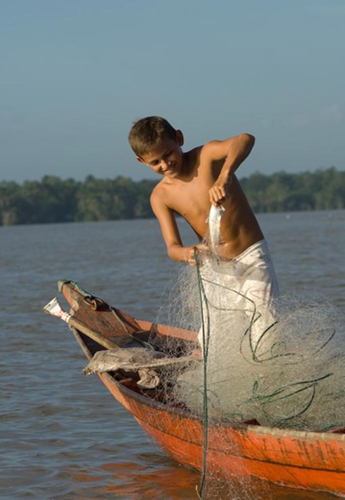 Stock Photo: 2238-354 Boy removing mapara catfish from gillnet, Campupema, Para, Brazil