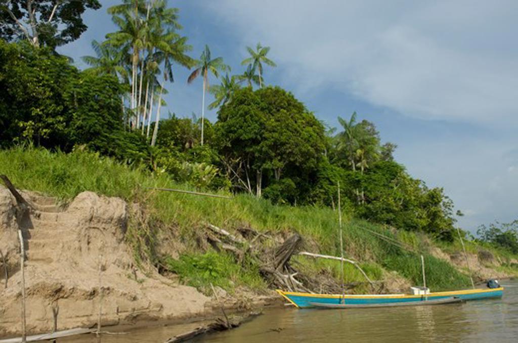 Boat at a port, Amazonas, Brazil : Stock Photo
