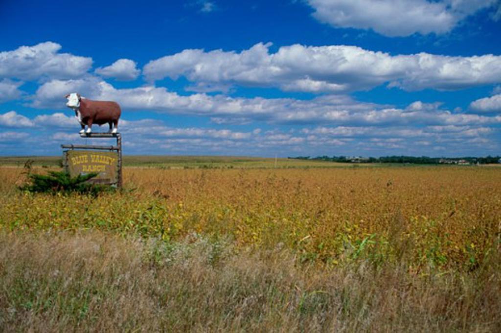 Blue Valley Ranch Marysville Kansas USA : Stock Photo