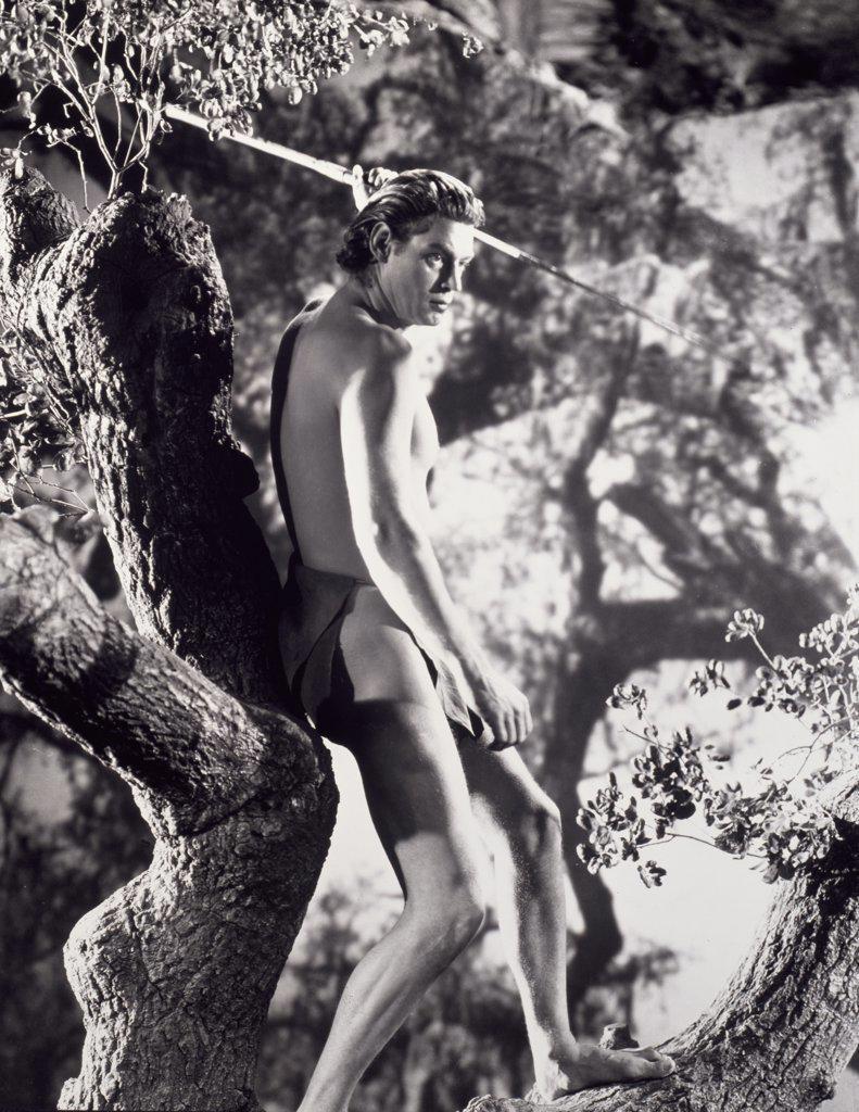 Stock Photo: 252-266 Johnny Weissmuller as Tarzan