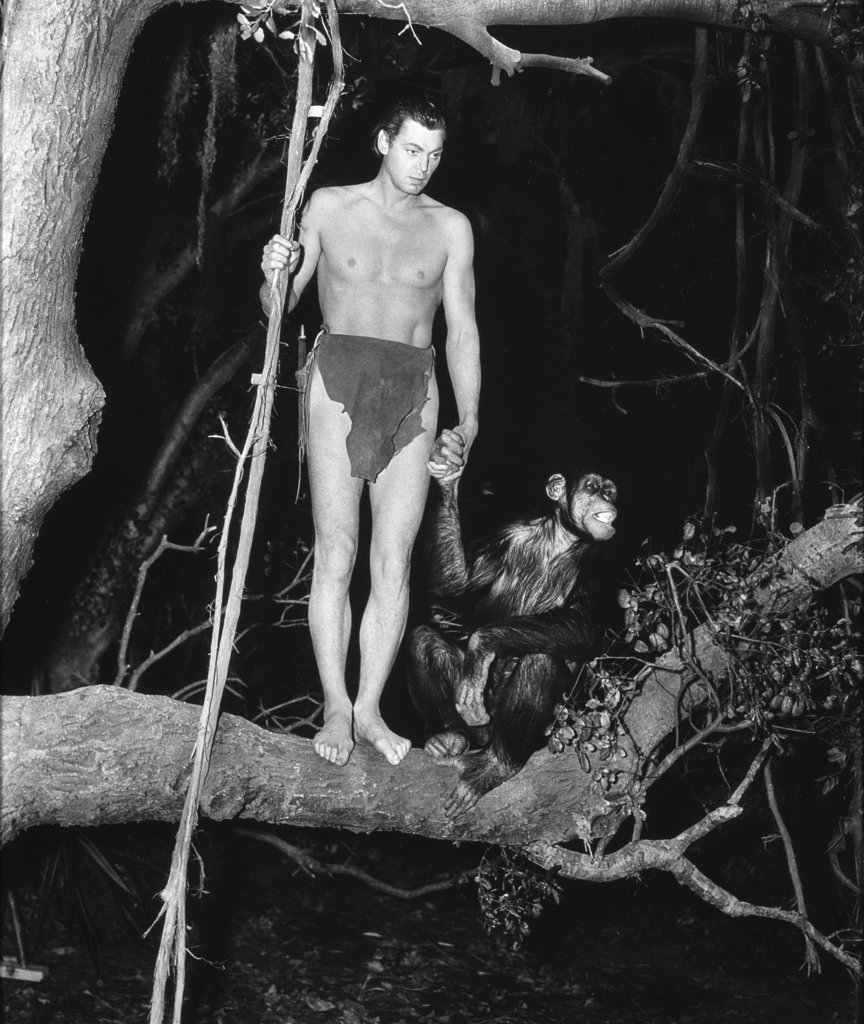 Stock Photo: 252-392 Johnny Weissmuller Tarzan and his Mate 1934