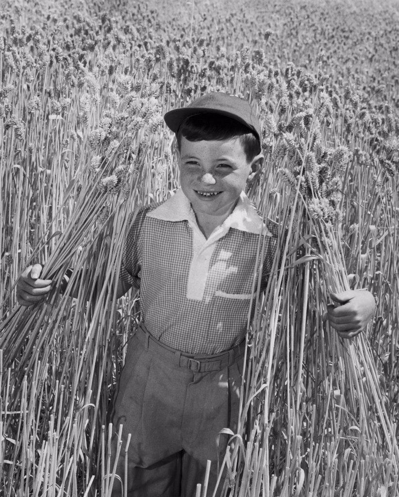 Stock Photo: 255-12724 Portrait of boy standing in field