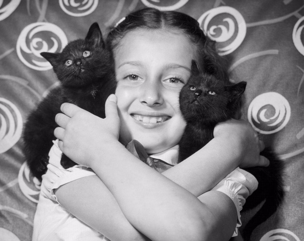 Portrait of a girl holding two kittens : Stock Photo