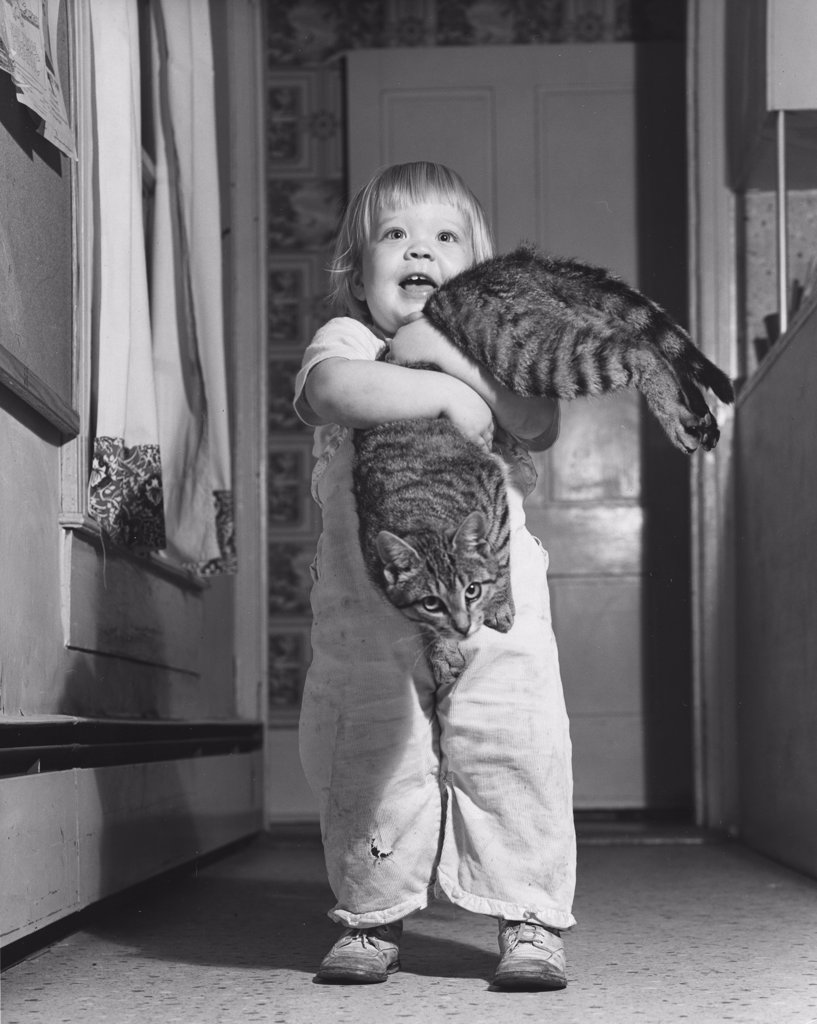 Child holding cat in house : Stock Photo
