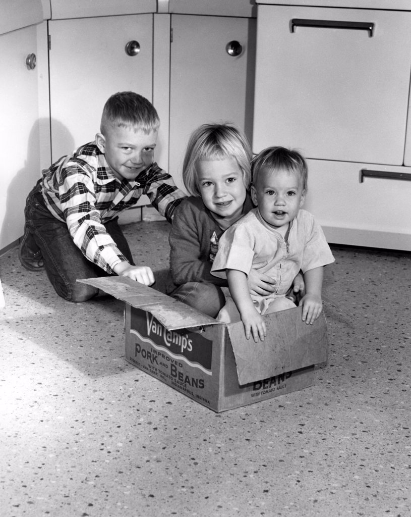 Stock Photo: 255-16460 Children playing with cardboard box in kitchen