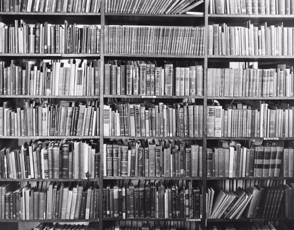 Stock Photo: 255-19040 Books on a shelf in a library