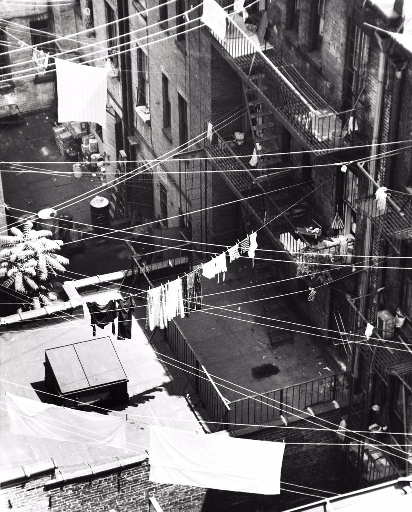 Stock Photo: 255-19105 High angle view of clothes hanging on clotheslines, New York City, New York State, USA