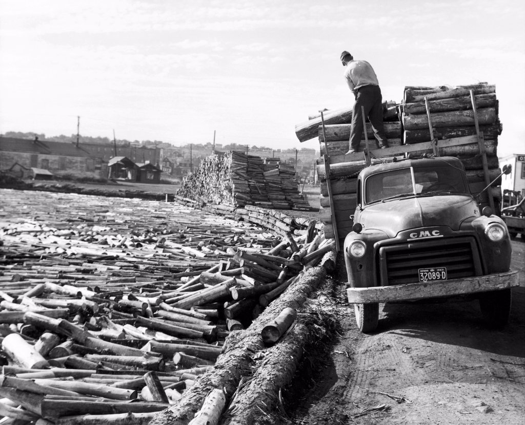 Man unloading logs from a truck, Port Arthur, Ontario, Canada : Stock Photo