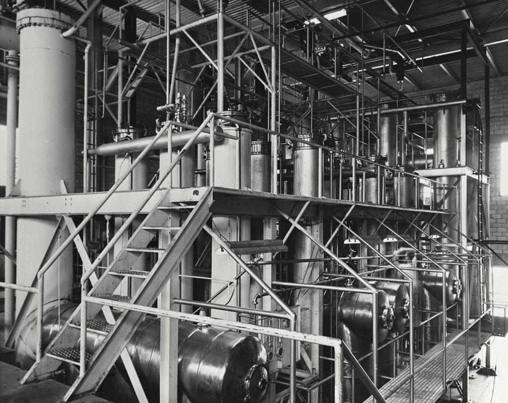 Ground crews loading cargo in an airplane, Miami, Florida, USA : Stock Photo