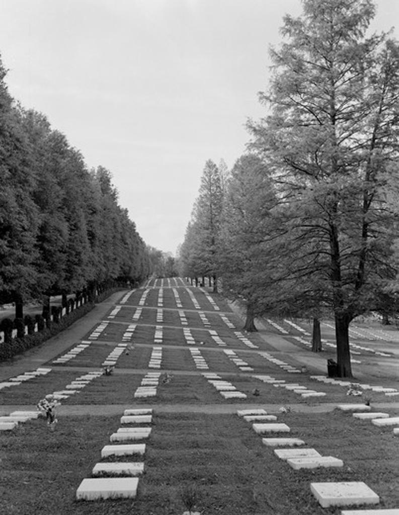 Stock Photo: 255-418928 USA, North Carolina, Salem, Moravian graveyard