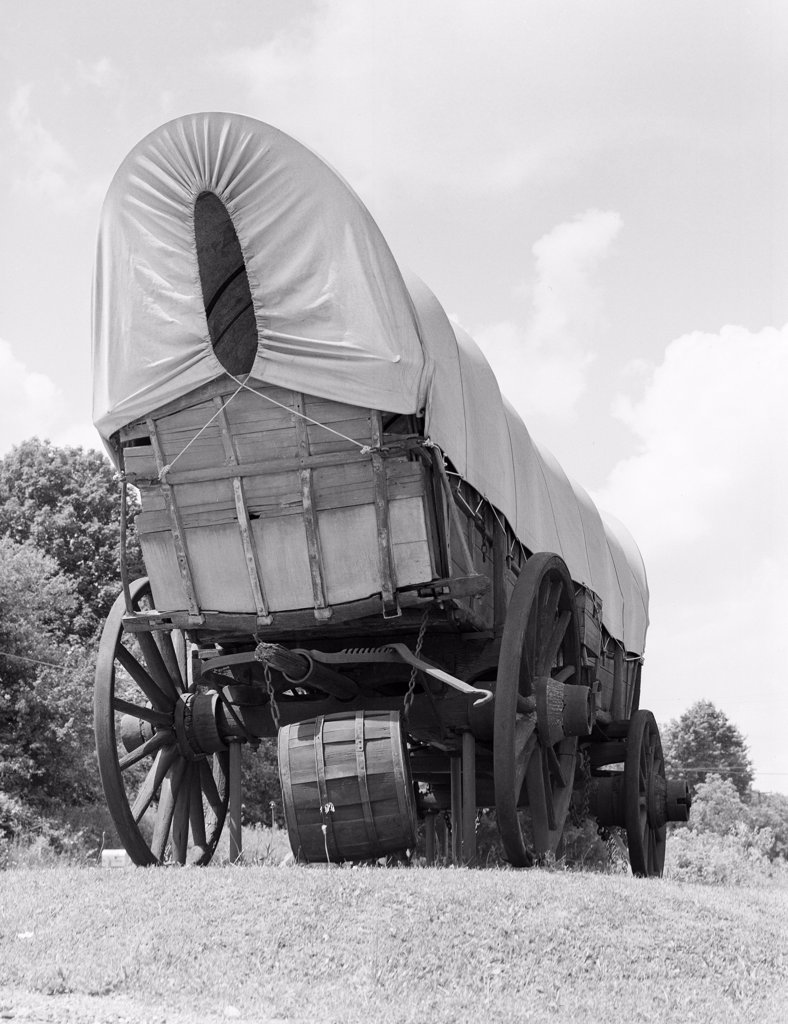 Stock Photo: 255-422493 Old wagon on meadow