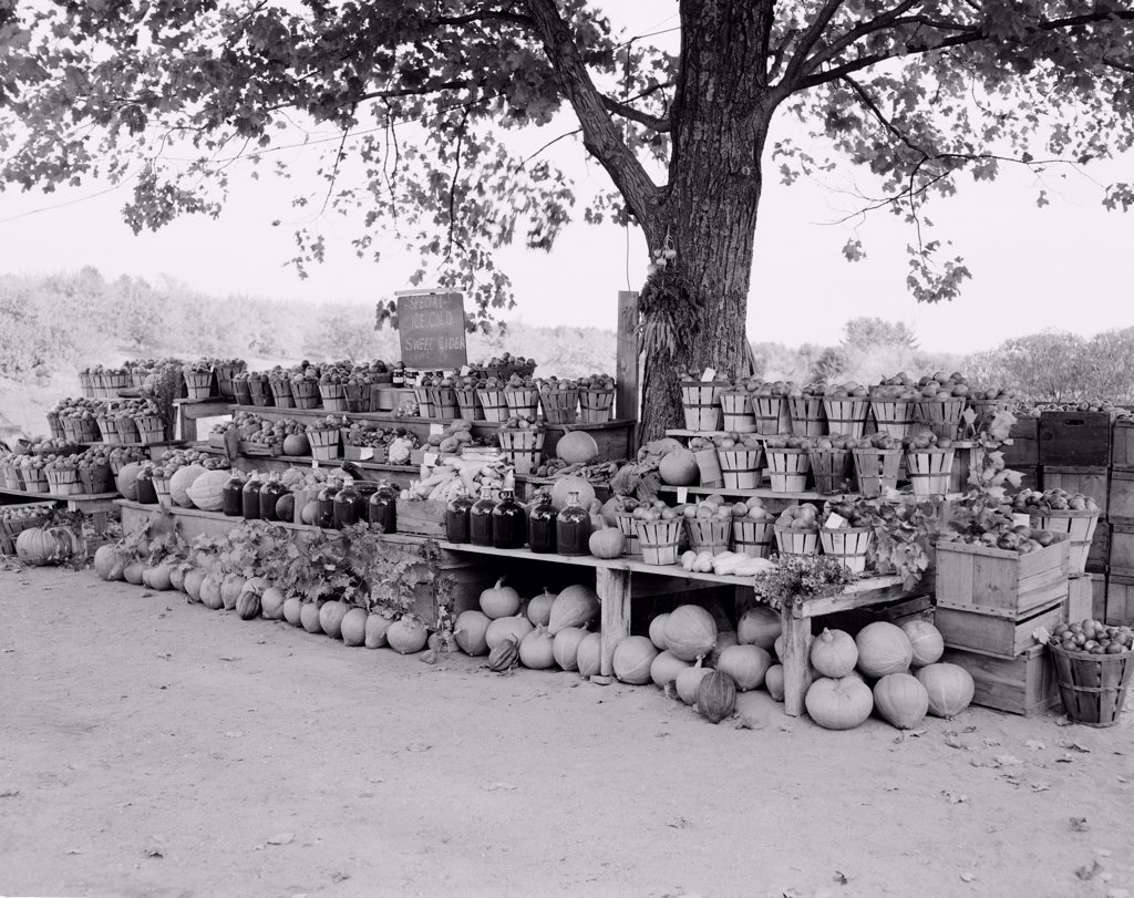 USA, New Hampshire, Roadside fruit and vegetable stall : Stock Photo