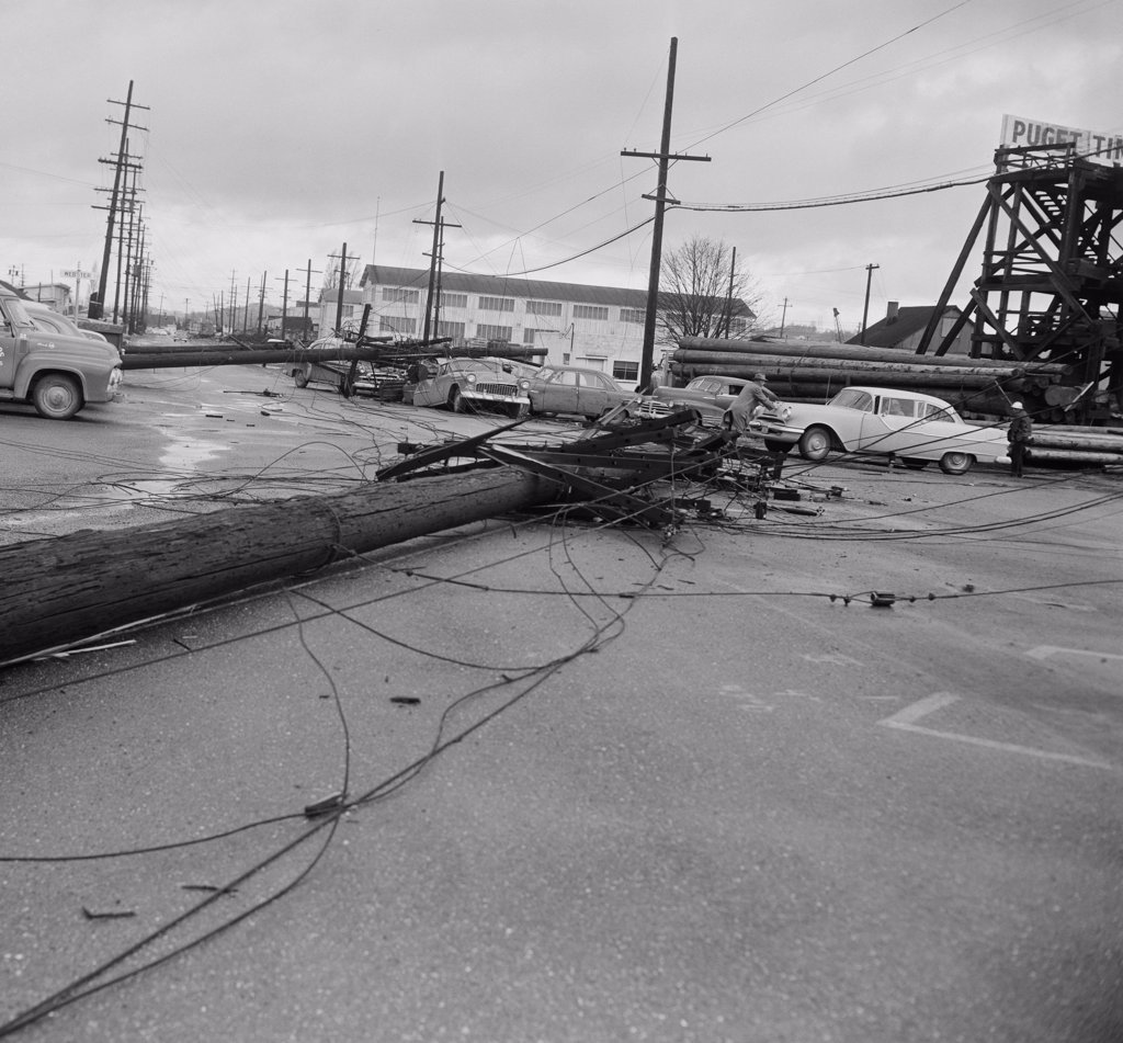 Power lines damaged and overturned by wind storm : Stock Photo