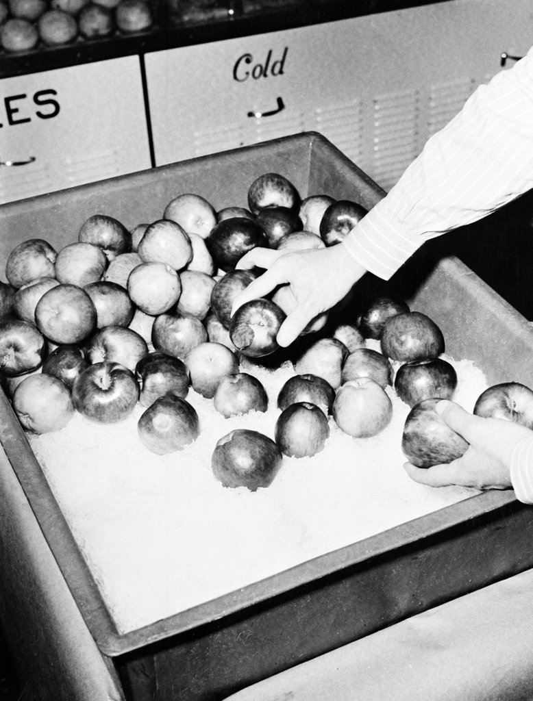 Stock Photo: 255-424110 Hand taking apples from ice display box