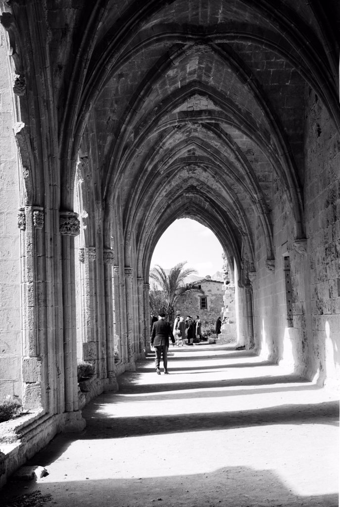 Stock Photo: 255-424481 Cyprus, Bellapais Abbey, cloister