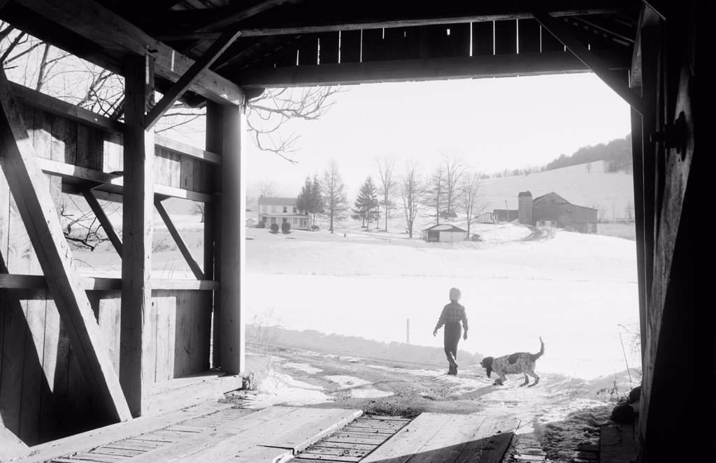 Stock Photo: 255-424495 USA, Pennsylvania, Columbia County, Orangeville, silhouette of boy and dog near covered bridge