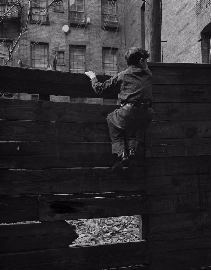 Stock Photo: 255-424762 Rear view of boy climbing over fence