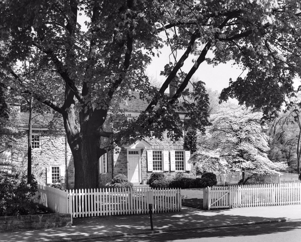 Stock Photo: 255-44848 Tree in front of a house, Washington Quarters, Valley Forge National Historic Park, Pennsylvania, USA