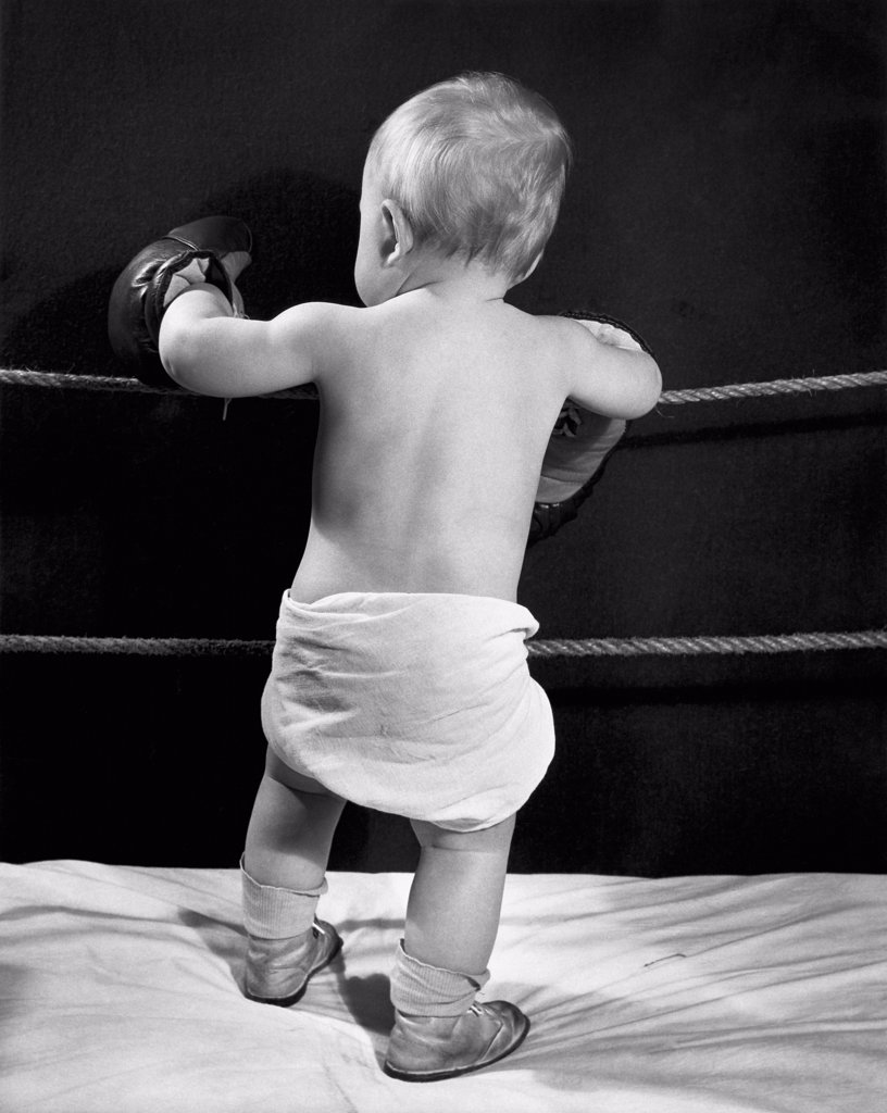 Stock Photo: 255-637 Rear view of a baby standing in a boxing ring