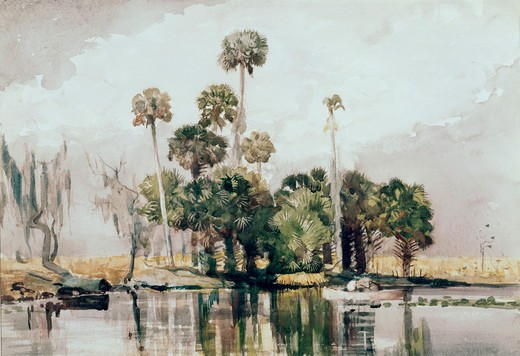Stock Photo: 260-227 Title Unknown (Exotic Island)