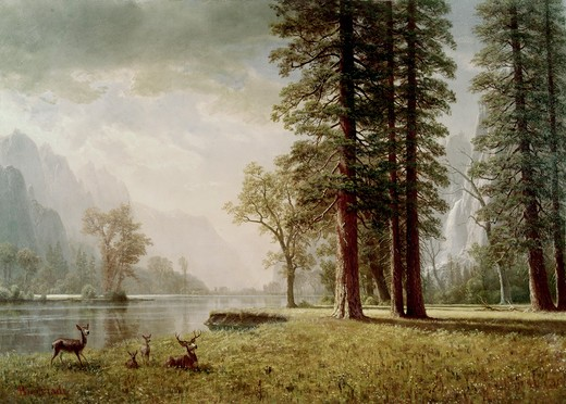 Stock Photo: 260-662 Hetch Hetchy Valley in California by Albert Bierstadt, 1830-1902