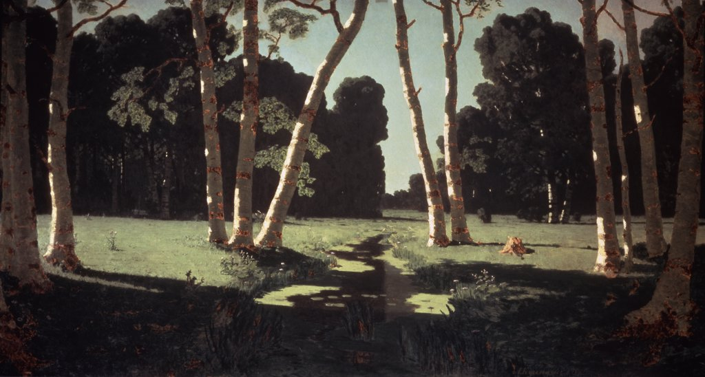 Stock Photo: 261-369 Birch Tree Forest
