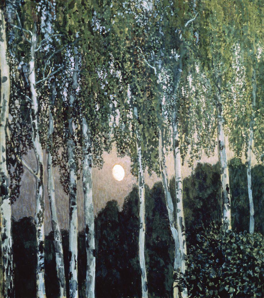Stock Photo: 261-758 Birch Trees 1908-1910 Aleksandr Jakovlevic Golovin (1863-1930 Russian) Tretyakov Gallery, Moscow, Russia