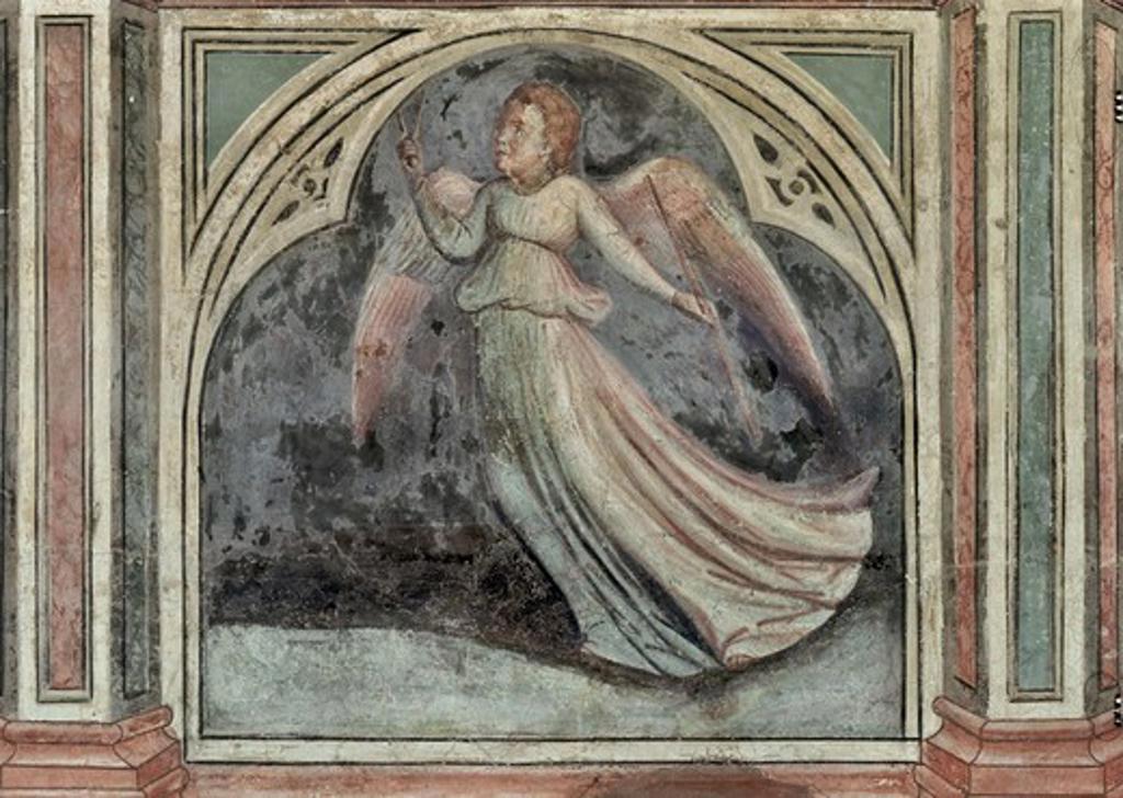 Earth - Astrology Artist Unknown Palazzo Della Ragione, Padua : Stock Photo