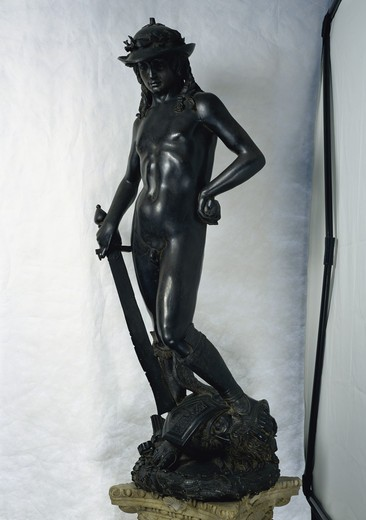 Stock Photo: 263-677 David