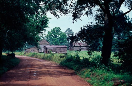 Dirt road passing near a farmhouse, Georgia, USA : Stock Photo