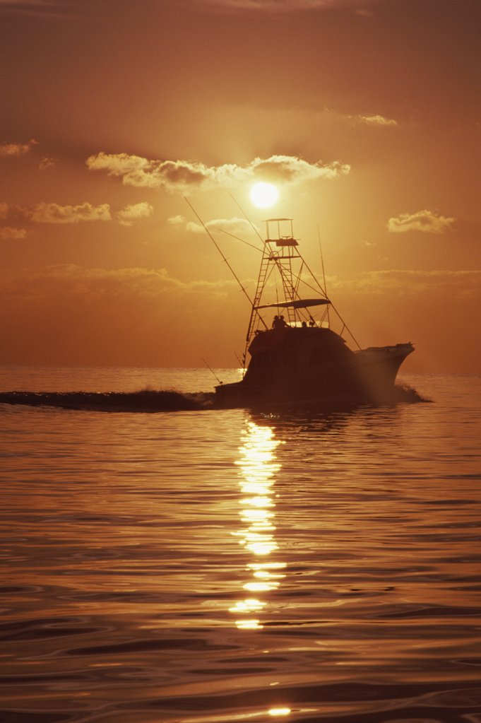 Stock Photo: 291-491B Silhouette of a fishing boat in the sea at sunset