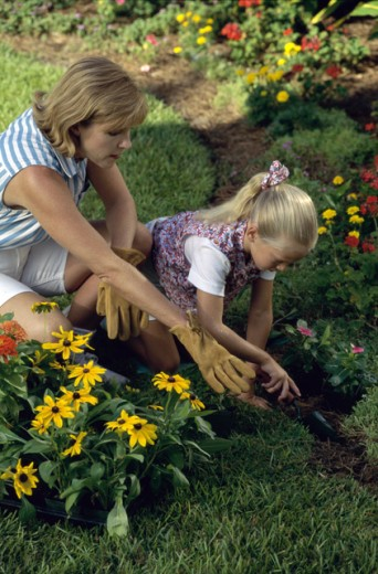 Stock Photo: 295-972A Mid adult woman gardening with her daughter