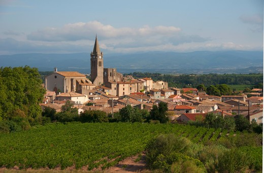 High angle view of vineyards with a church in a village, Narbonne, Aude, Languedoc-Rousillon, France : Stock Photo