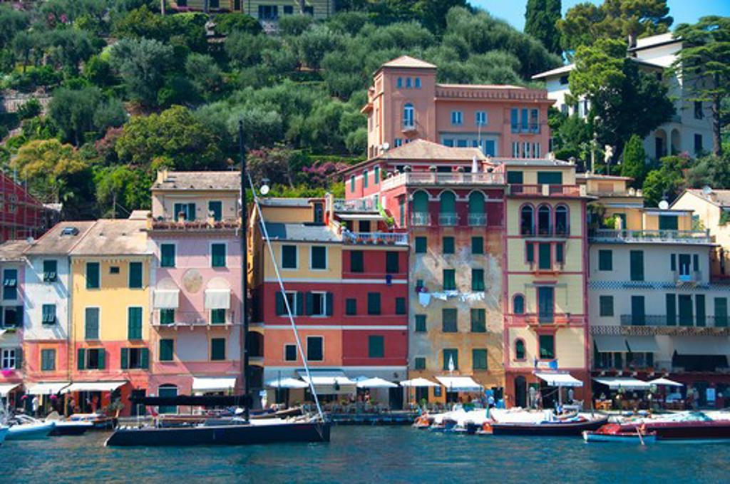 Boats at a harbor, Portofino, Genoa Province, Liguria, Italy : Stock Photo