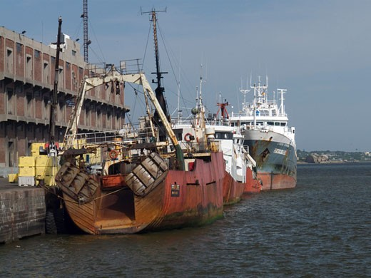 Stock Photo: 3138-786 Container ship at a commercial dock, Montevideo, Uruguay