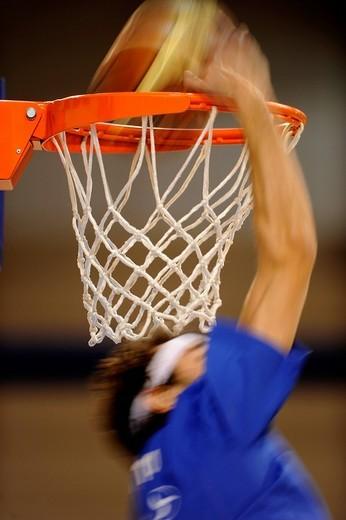 Stock Photo: 3153-580052 pallacanestro