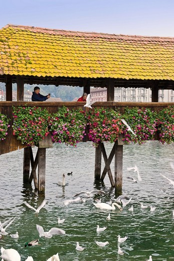 Chapel Bridge over the Reuss River, Lucerne, Switzerland : Stock Photo