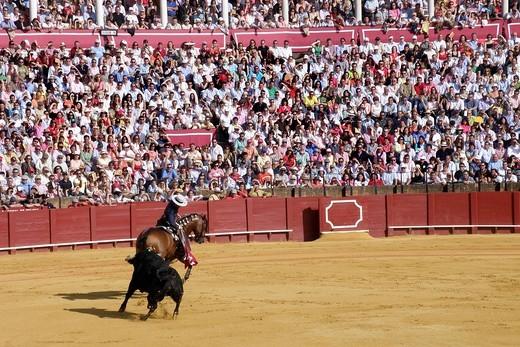 Stock Photo: 3153-582488 corrida, plaza de toros de la real maestranza, siviglia, spagna