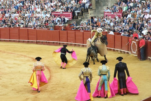 corrida, plaza de toros de la real maestranza, siviglia, spagna : Stock Photo