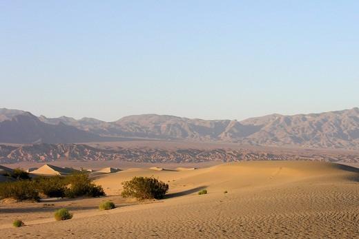death valley, california, usa : Stock Photo