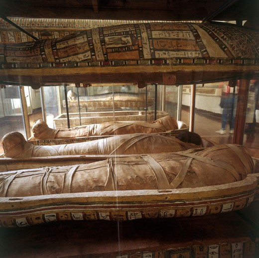 Stock Photo: 3153-587388 italy, piemonte, torino, egyptian museum, egyptian mummies