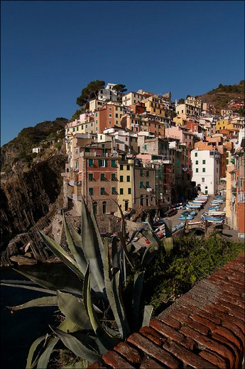 Stock Photo: 3153-587676 europe, italy, liguria, cinque terre, riomaggiore