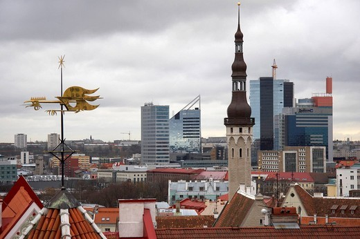 estonia, tallinn : Stock Photo