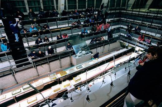 Stock Photo: 3153-612929 italy, marche, ancona, fish auction
