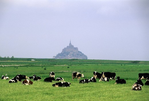mont saint michel, normandy, france, europe : Stock Photo